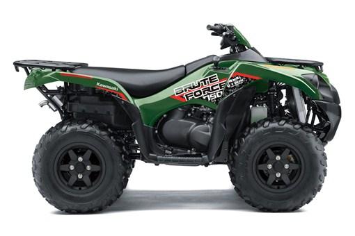 BRUTE FORCE® 750 4x4i